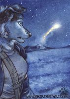Nordguard Card Game: Distress Flare by screwbald