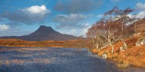 Stac Pollaidh and Silver Birch by Alex37