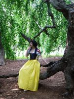 Snow White: In The Woods by katyanoctis