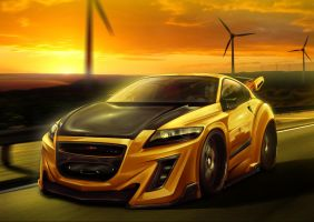 Honda CR-Z - Team Turkiye 2 by EmreFast
