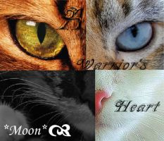 Warrior Cats by Moon-Forever