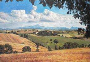 Colline Marchigiane by AndreaTM