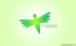 Colibrie by soneyboy