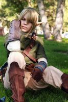 Legend of Zelda - Link 04 by shutter-crazy