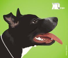 Pit Bull by Kinhodesign