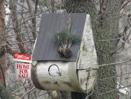 Bird House Foreclosure by Arclight-17