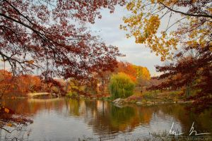 Central Park, Lake and Bow Bridge by kaitou-ace