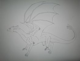 Dragon -uncolored- by OP-Girl16