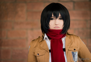 Mikasa Ackerman -  time to make the sacrifice by Mizukishou