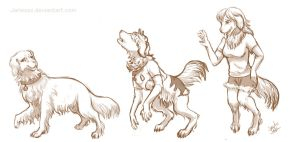 3 stage Golden Retriever Alt form .: Commission :. by Janexas