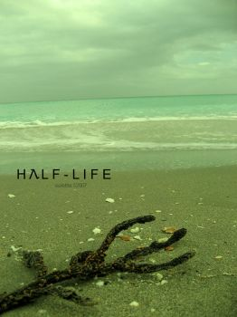 Half Life by Violettte