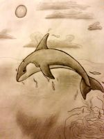 Killer Whale by 1Rootbeer
