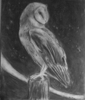 Charcoal Owl- My first ever commish! by silvermoon442