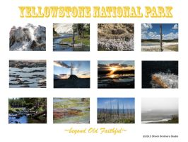 Backcover Yellowstone 2014 by sith-kitten