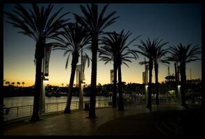 Long Beach Nights by wackycracka