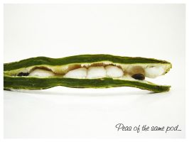 Peas of the same pod by blizzy123
