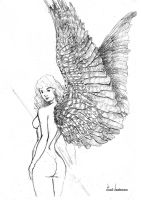 Angel. Study. by Verissimosousa