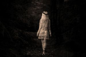 a walk in the woods by Vacantia