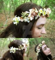 Spring Fae Floral Crown by ValkyrieOfODIN