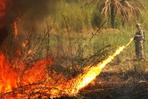 Flame Thrower by MilitaryPhotos