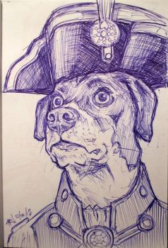 Sketch Bk. Admiral Liam the Dog by Trashe-Trav