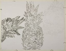 Contour Pineapple by unknown-nobody
