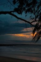 Noosa - sunset 1 by wildplaces