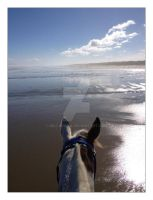 Out Riding on Oreti Beach, NZ. by bellarama