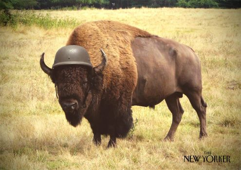 Buffalo Soldier by GeeeO