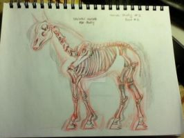 Horse Skeleton Full Body by KohakuRivers