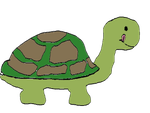 I can be a turtle by no-sense-lover