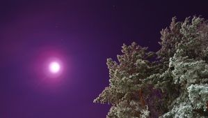 Night sky in Finland by game-flea
