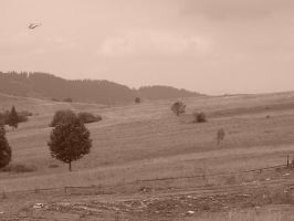 plains and helicopter by piotr-semberecki