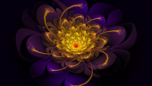 Fractal Chrysanthemum by plusonemace