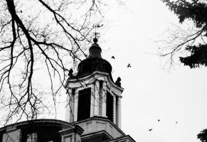 University of Alberta- four by unknown-nobody
