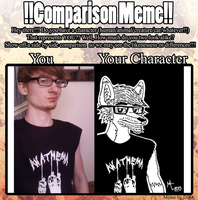 Comparison Meme (2013) by CrashyBandicoot