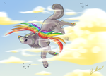 Take to the Sky by demonwolf1999