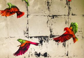 'Wild and Winging It' - detail by LouiseMcNaught
