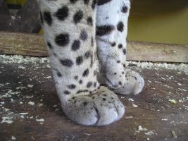 Ocelot paws by Deathly-dream