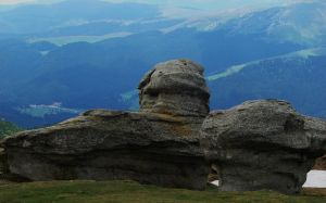 Mountain's Guard by lumizet