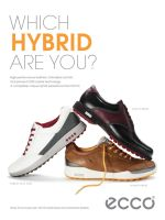 ECCO HYBRID Shoe Advertisement by kriecheque