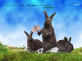 Chocolate Bunny by superalysson