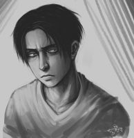 Levi sketch. by Notesz