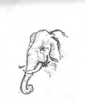 Elephant Sketch by xAxiom