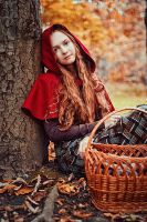 Little Red Riding Hood by ann-emerald