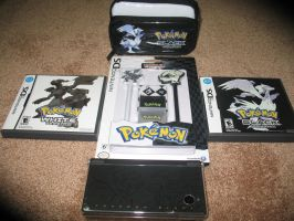 Limited Edition Pokemon Dsi by TheTrueSurvivor
