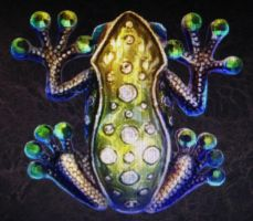 Emerald frog by isaac77598