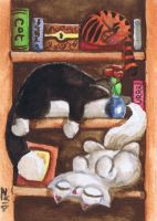 Funny cats watercolour sleepy bookshelf by KingZoidLord
