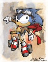 Steam the Hedgehog by thedustud