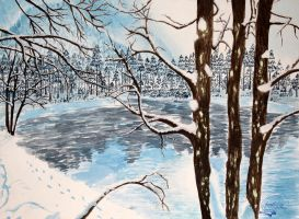 Winter lake by LionDEmil